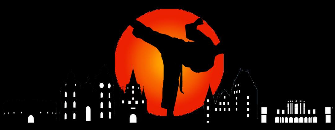 Karate SV Ingolstadt Haunwöhr