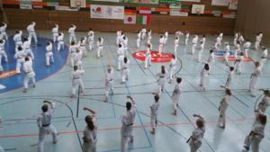 7. Internationales Karate Sommercamp