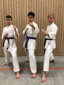 Ehrensache - Karate SV Ingolstadt - Haunwöhr