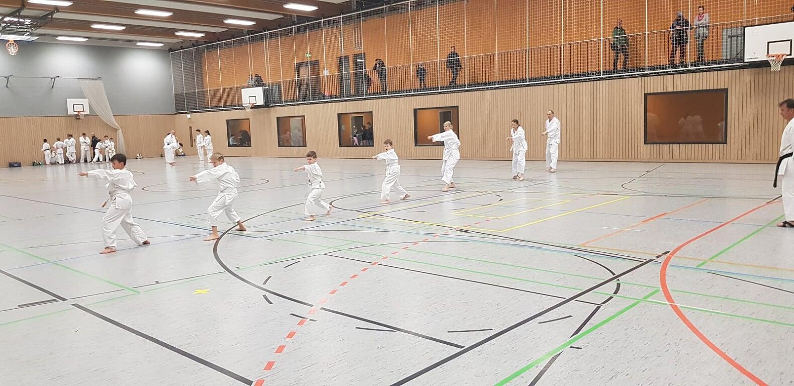 Gürtelprüfung 2019 - Karate SV Ingolstadt - Haunwöhr
