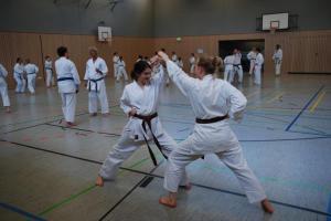 Karatelehrgang  und Gürtelprüfung - Karate SV Ingolstadt-Haunwöhr